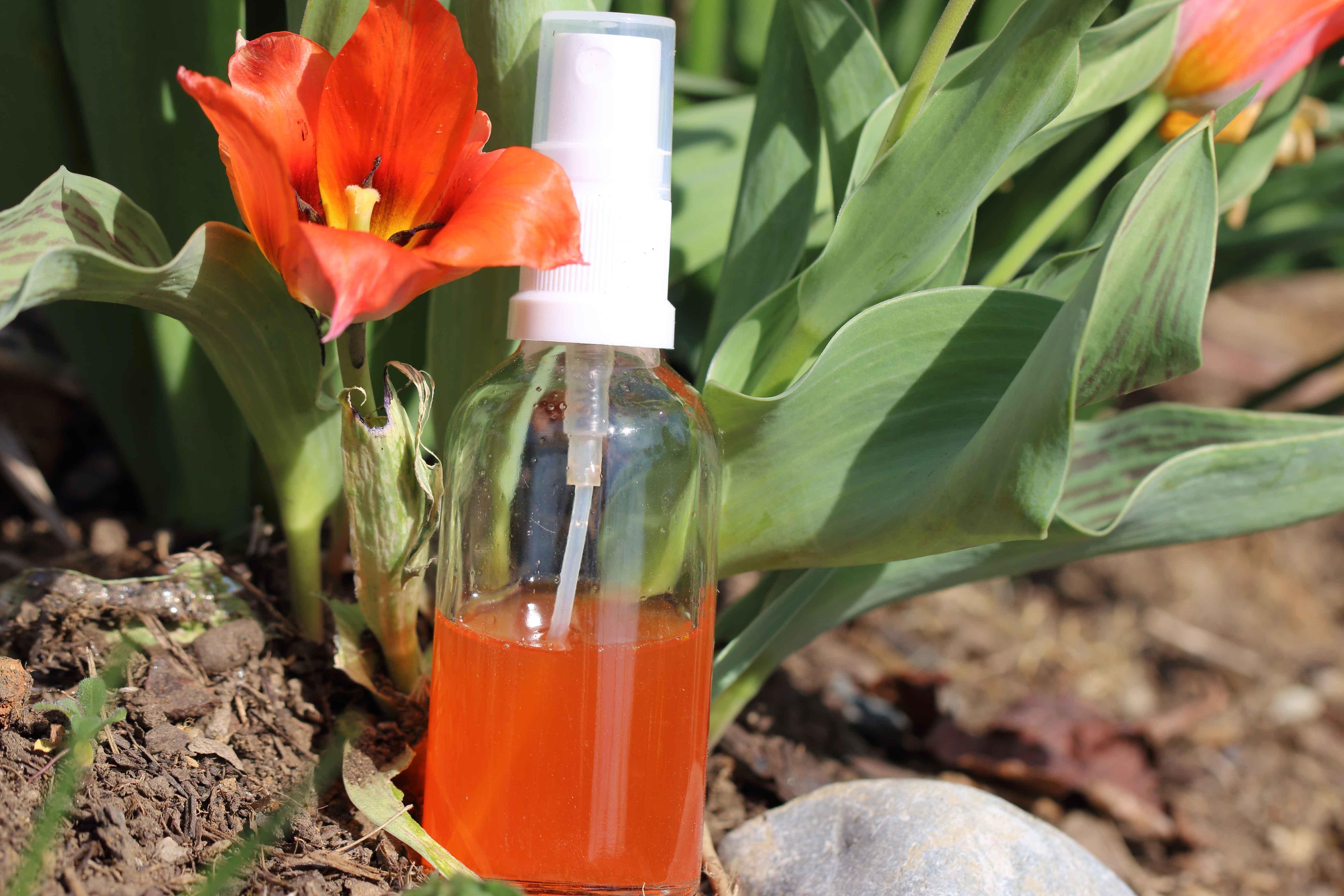 Tulpenwasser, Beispiel Essbare Hautpflege